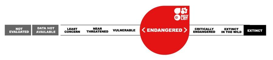Endangerered