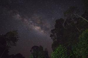 Via làctia / Vía Láctea / Milky Way