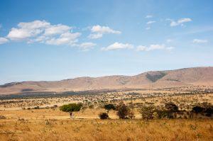 PN Serengeti / Serengeti NP
