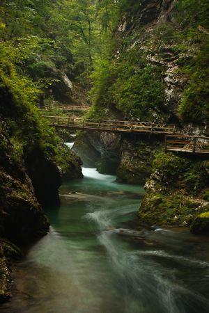 Barranc de Vintgar / Barranco de Vintgar / Vintgar Gorge
