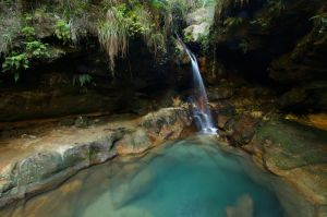 Piscina Natural / Natural Pool